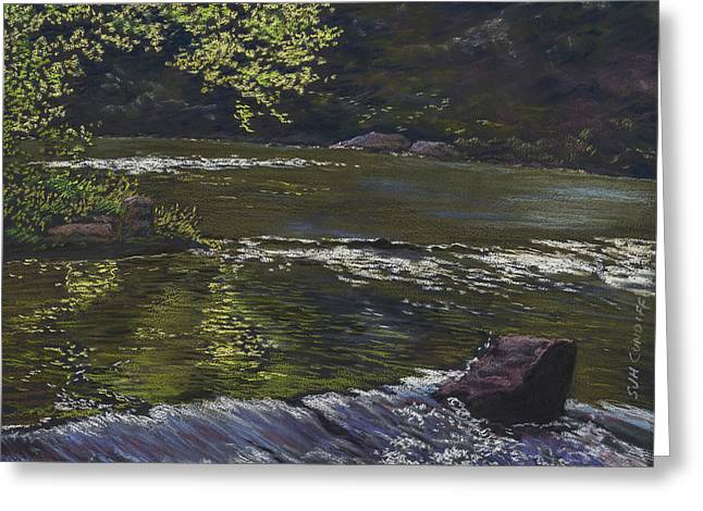 Trout Fishing Pastels Greeting Cards - Riffle Greeting Card by Sammy Hancock Cundiff