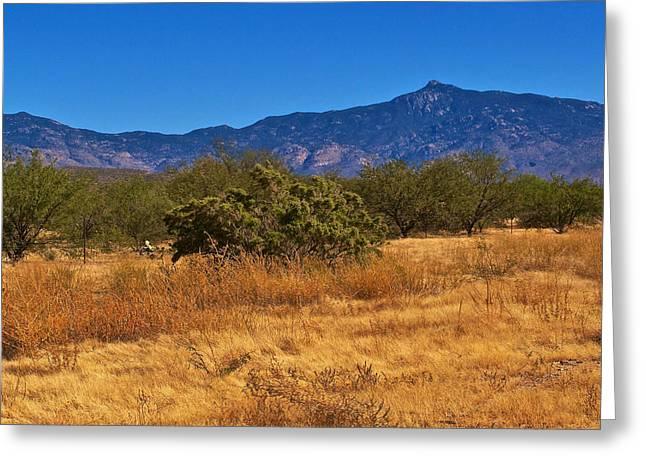 Rincon Mountains Greeting Cards - Rincon Peak Arizona Greeting Card by Eduardo Palazuelos Romo