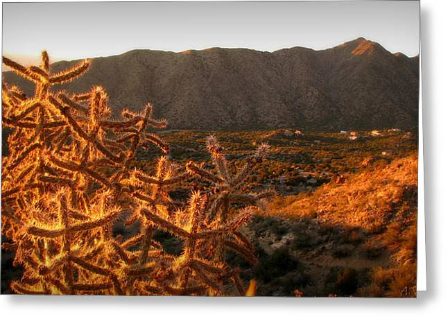 Rincon Greeting Cards - Rincon Spur Sunset Views Greeting Card by Aaron Burrows