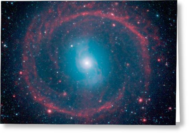 Zodiac Ring Greeting Cards - Ring of Stellar Fire Greeting Card by Celestial Images