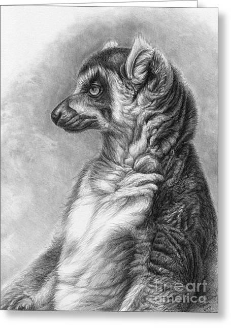 Madagascar Drawings Greeting Cards - Ring-tailed Lemur - Lemur catta  Greeting Card by Svetlana Ledneva-Schukina