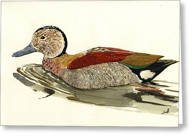 Ringed Teal Greeting Card by Juan  Bosco