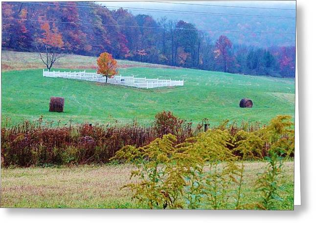 Final Resting Place Mixed Media Greeting Cards - RIP on the Countryside Greeting Card by Sherry Brant