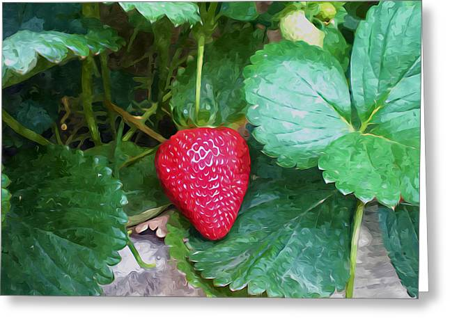 Spring Greeting Cards - Ripe strawberries in a garden Greeting Card by Lanjee Chee