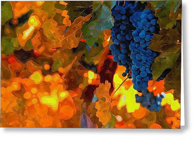 Vintner Greeting Cards - Ripe Wine Grapes Ready For Harvest Greeting Card by Lanjee Chee