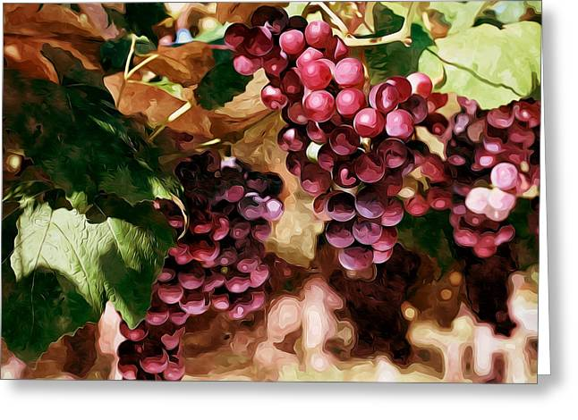 Cultivation Paintings Greeting Cards - Ripening red grape clusters in the farm Greeting Card by Lanjee Chee