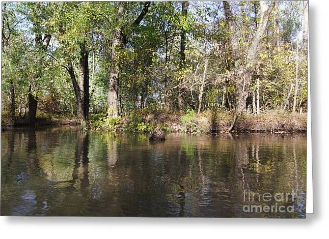 Reflections Of Trees In River Greeting Cards - Rippled Reflection  Greeting Card by Deborah DeLaBarre