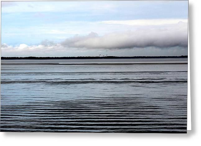Harkers Greeting Cards - Ripples at Harkers Island Greeting Card by Rand Wall