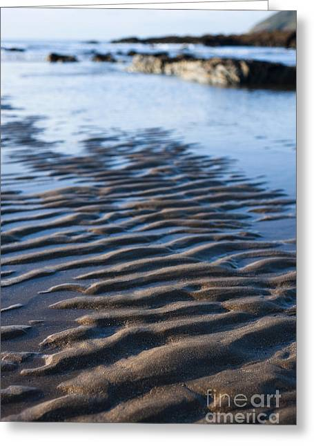 Ripples In The Water Greeting Cards - Ripples in the Sand Greeting Card by Anne Gilbert