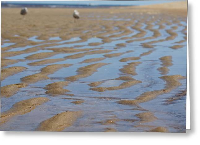 Ripples In The Sand Greeting Cards - Ripples In The Sand Greeting Card by Happy Events  International