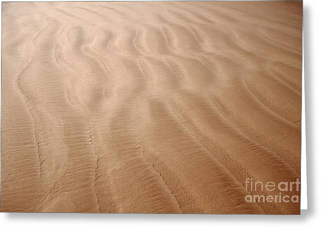 Ripples In The Sand Greeting Cards - Ripples in the Sand Greeting Card by Paul Bettison