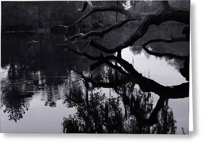 Ripples of Black and White Greeting Card by Warren Thompson