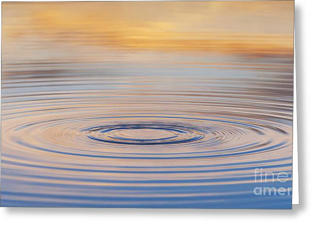 Water Drop Greeting Cards - Ripples on a Still Pond Greeting Card by Tim Gainey