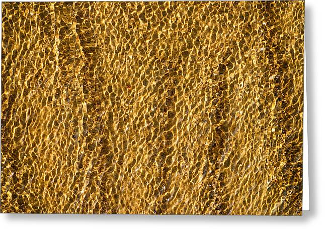 Close Up Photography Greeting Cards - Golden Ripples Greeting Card by Wim Lanclus