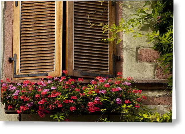 Riquewihr Window Greeting Card by Brian Jannsen