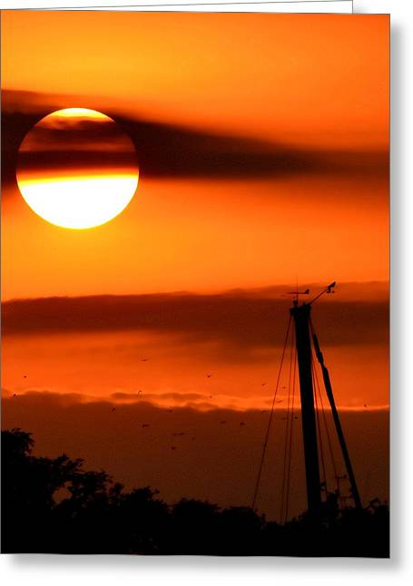 Stockton Greeting Cards - Rise And Shine Greeting Card by Deena Stoddard