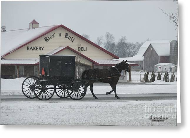 Rural Indiana Greeting Cards - Rise n Roll Buggy Greeting Card by David Arment