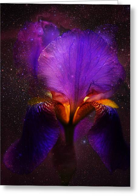 Spa Center Greeting Cards - Risen from Stars. Cosmic Iris Greeting Card by Jenny Rainbow