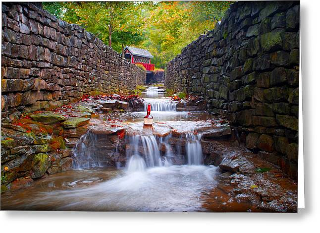 Backroads Greeting Cards - Rising From Whiskey Creek Greeting Card by Wayne Stacy