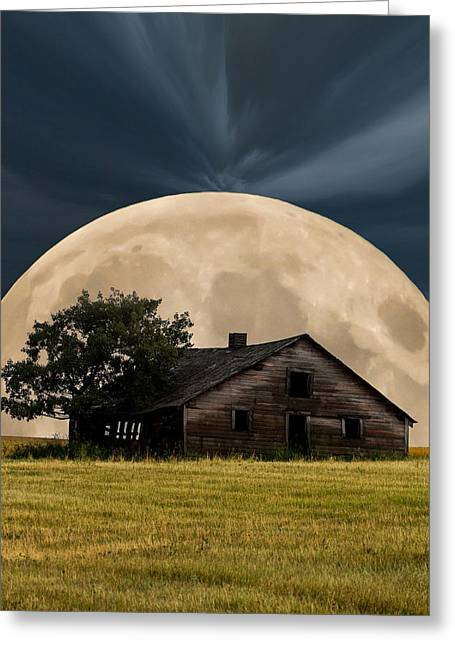 Eerie Greeting Cards - Rising Moon Greeting Card by Xenia Headley