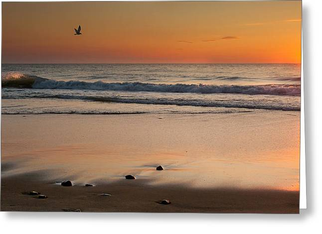 Cape Cod National Seashore Greeting Cards - Rising Sun Greeting Card by Bill  Wakeley
