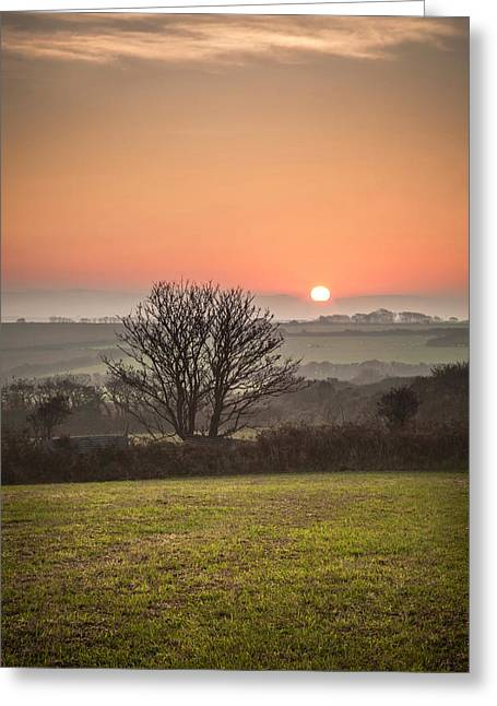 Cubert Greeting Cards - Rising Sun Greeting Card by Christine Smart