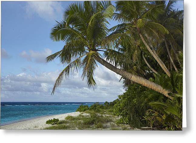 Tim Fitzharris Greeting Cards - Ritidian Beach in Guam Greeting Card by Tim Fitzharris