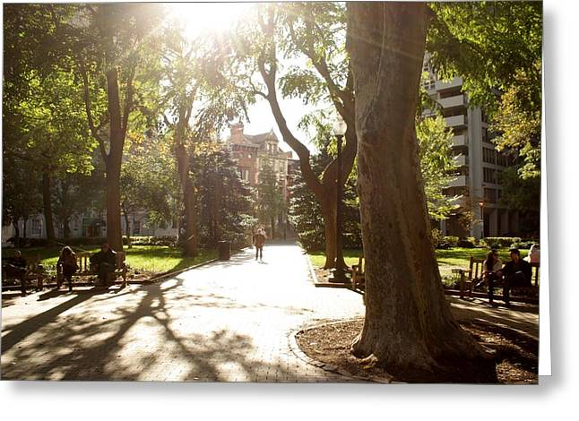 Phillies Framed Prints Greeting Cards - Rittenhouse in the sun Greeting Card by Christopher Woods