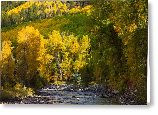 River and Aspens Greeting Card by Inge Johnsson