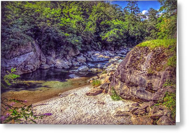 Stein Greeting Cards - River Beach Greeting Card by Hanny Heim