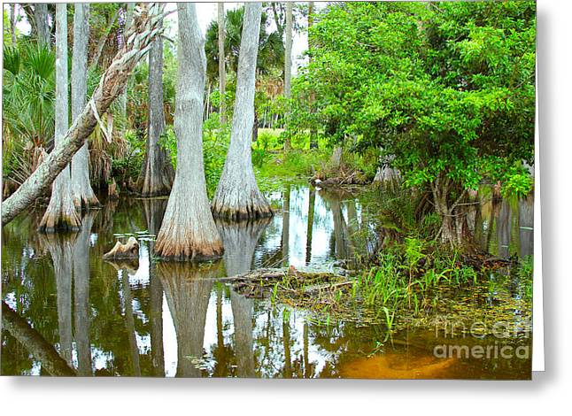 Lanscape Greeting Cards - River Bend lake Greeting Card by Carey Chen