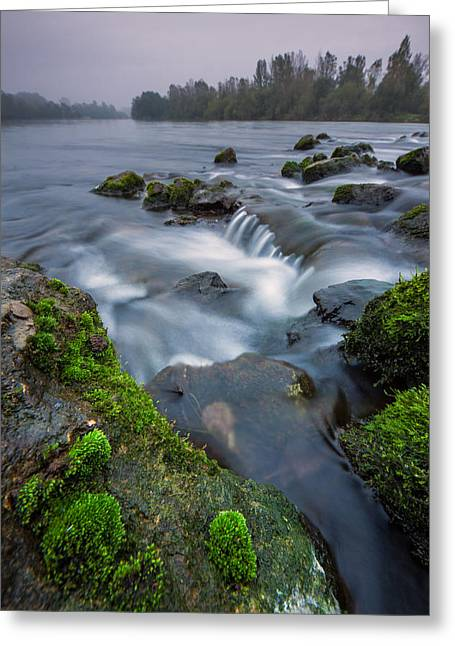 Riverscapes Greeting Cards - River detail Greeting Card by Davorin Mance