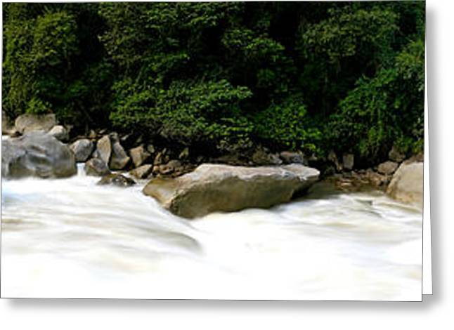 Andes Greeting Cards - River Flowing In A Forest, Aguas Greeting Card by Panoramic Images