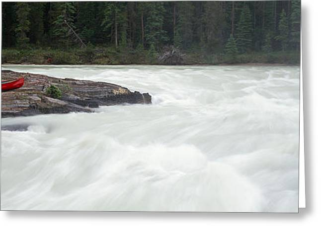 Canoe Photographs Greeting Cards - River Flowing In A Forest, Kicking Greeting Card by Panoramic Images