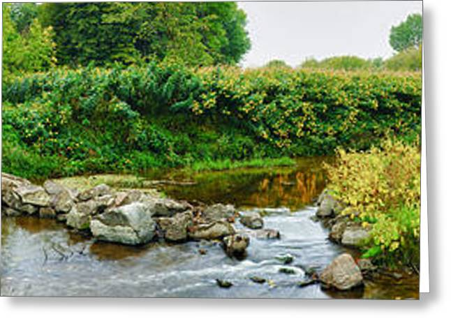 Water Flowing Greeting Cards - River Flowing Through A Forest, Acadia Greeting Card by Panoramic Images