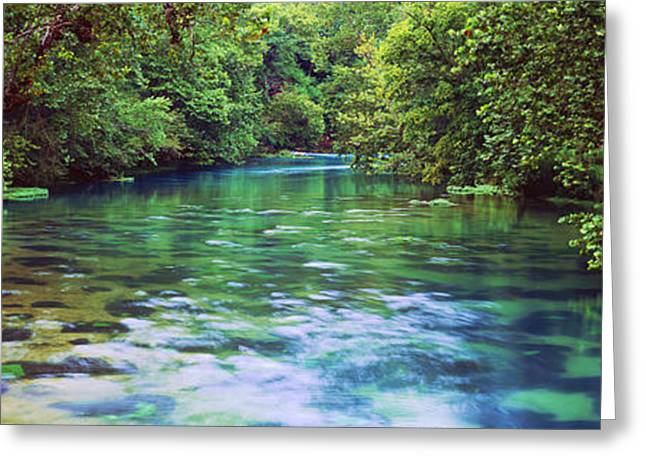 Ozark Greeting Cards - River Flowing Through A Forest, Big Greeting Card by Panoramic Images