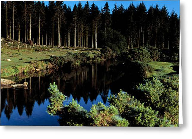 Reflections In River Greeting Cards - River Flowing Through A Forest, East Greeting Card by Panoramic Images