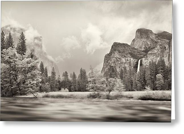 Californian Greeting Cards - River Flowing Through A Forest, Merced Greeting Card by Panoramic Images
