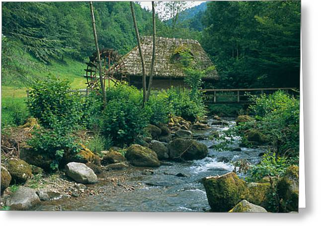 Agricultural Building Greeting Cards - River Flowing Through Forest, Black Greeting Card by Panoramic Images