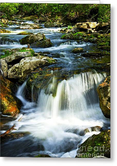 Water Flowing Greeting Cards - River flowing through woods Greeting Card by Elena Elisseeva