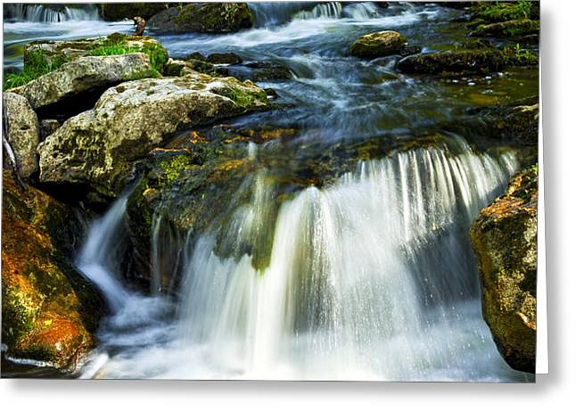 River flowing through woods Greeting Card by Elena Elisseeva