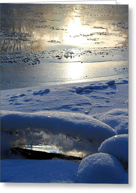 Trees Reflecting In Water Greeting Cards - River Ice Greeting Card by Hanne Lore Koehler