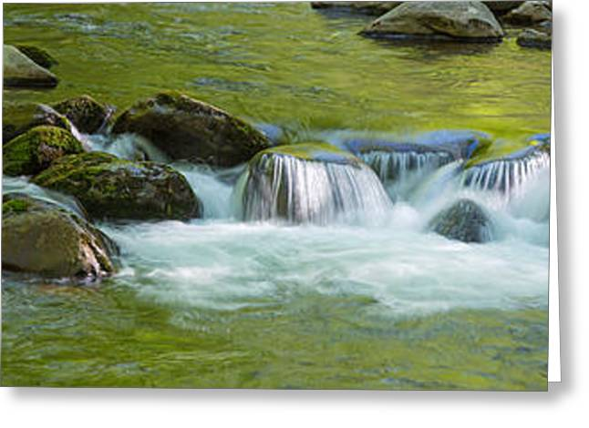 River In Great Smoky Mountains National Greeting Card by Panoramic Images