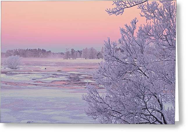 River in winter Greeting Card by Conny Sjostrom