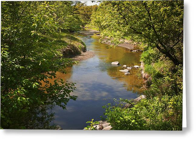 Fall River Scenes Greeting Cards - River in Woods Greeting Card by Donald  Erickson
