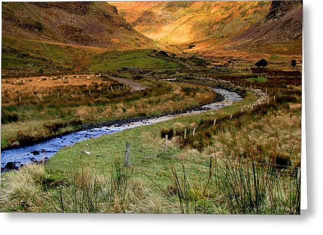 Walsh Lake Greeting Cards - River near Annascaul Lake in Kerry Greeting Card by Barbara Walsh