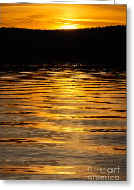 Reflections Of Sun In Water Greeting Cards - River of Gold Portrait Greeting Card by Michael Ver Sprill