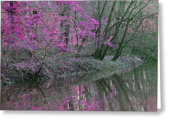 Indiana Springs Digital Art Greeting Cards - River of Pastel Greeting Card by Lorna Rogers Photography