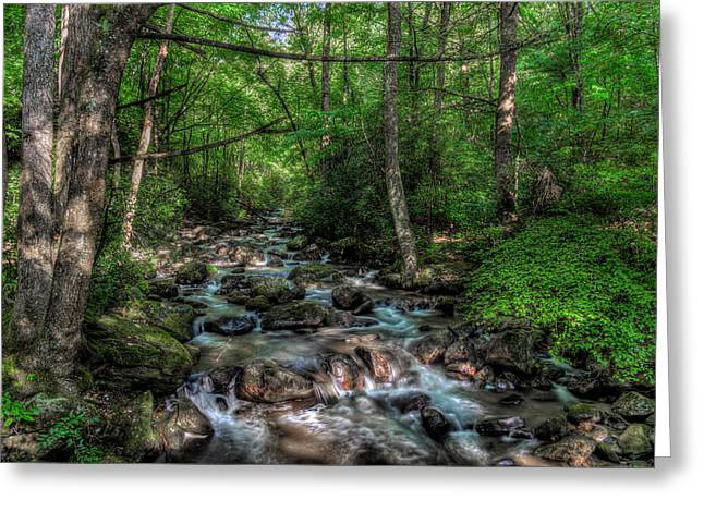 Jones Gap State Park South Carolina Greeting Card by Harry B Brown