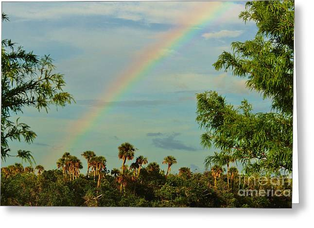 St. Lucie River Greeting Cards - River Park Rainbow Greeting Card by Lynda Dawson-Youngclaus
